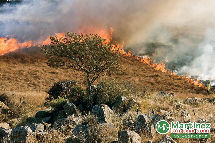 Fire Season Arrives In California With Summer